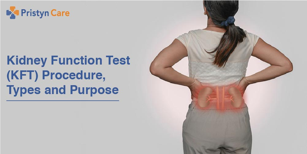Kidney Function Test (KFT) Procedure, Types and Purpose