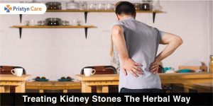 Treating Kidney Stones in Herbal Way