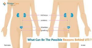 what-can-be-the-possible-reasons-behind-uti