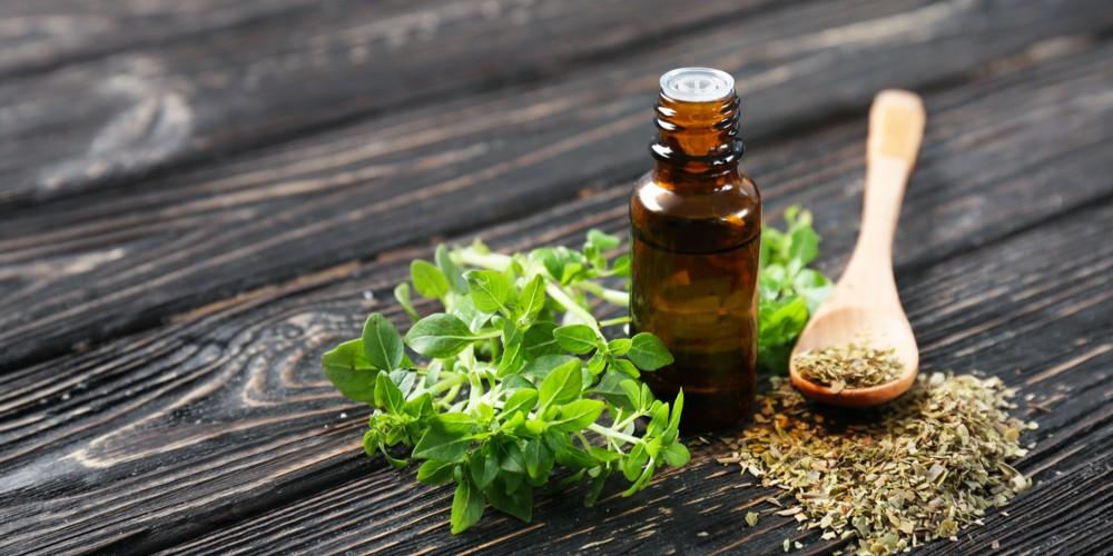 oregano leaves oil