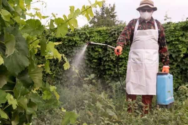 spraying of pesticides