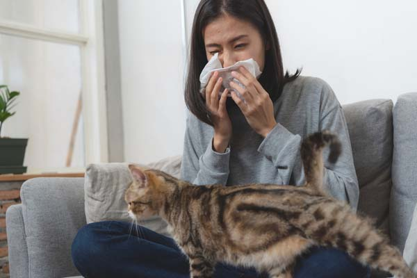 A girl sneezing due to a cat