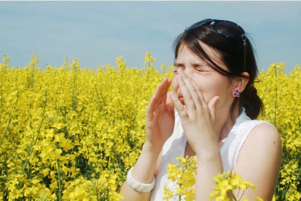 Girl sneezing in the mustard field