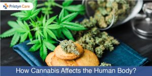 Cannabis affects human body