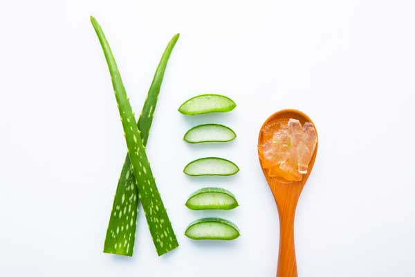 aloe vera for young skin