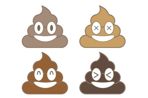 Normal Brown coloured poop