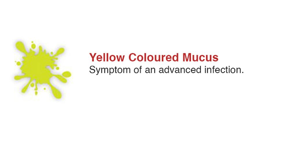 Yellow Coloured Mucus