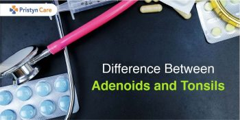 Cover image for difference between tonsils and adenoids