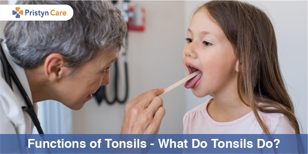 Cover image for functions of tonsils