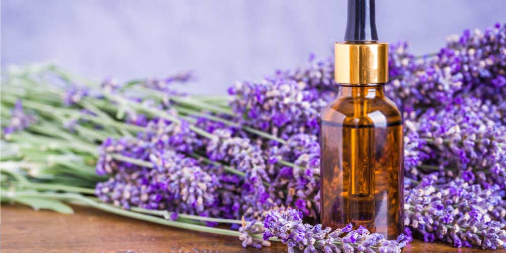 Lavender oil-Essential-Oils-To-Treat-Ear-Pain