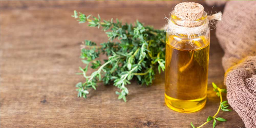 Thyme oil-Essential-Oils-To-Treat-Ear