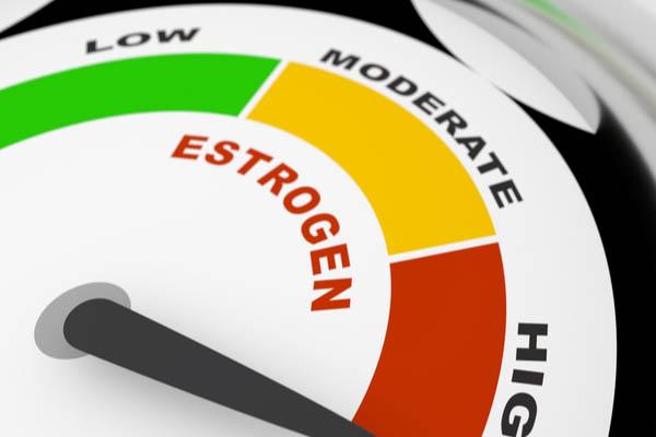 high estrogen level