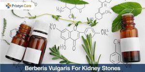berberis vulgaris for kidney stones