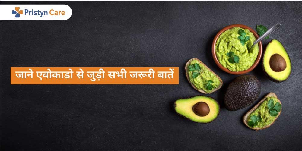 avocado-in-hindi