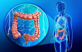 colon hydrotherapy in gurgaon south delhi